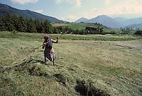 Europe/France/Midi-Pyrénées/09/Ariège/Couserans/Mijanès: Fenaison et Paysane<br /> PHOTO D'ARCHIVES // ARCHIVAL IMAGES<br /> FRANCE 1980