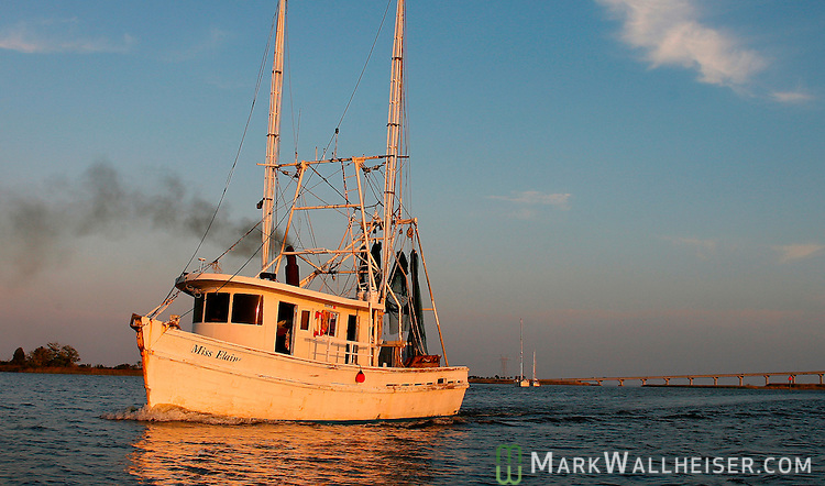 The shrimp boat, Miss Elaine, steams up the Apalachicola River in Apalachicola, Florida.    (Mark Wallheiser/TallahasseeStock.com)