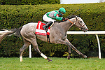 October 10, 2020: Harvey's Lil Goil, trained by Bill Mott, wins the Queen Elizabeth II Challenge Cup (G1) at Keeneland on October 10, 2020 in Lexington, KY. Jessica Morgan/ESW/CSM