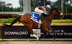 February 1, 2020: #3, Tiz the Law with Manny Franco in the irons, earns points towards the Kentucky Derby after winning the Holy Bull Stakes for Trainer Barclay Tagg and Sackatoga Stable at Gulfstream Park on February 1, 2020 in Hallandale Beach, FL. (Photo by Carson Dennis/Eclipse Sportswire/CSM)