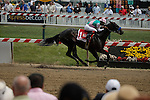 MAY 16, 2015:  MAY 16, 2015: Fame and Power wins the Sir Barton with Martin Garcia aboard at Pimlico Race Course in Baltimore, Maryland.at Pimlico Race Course in Baltimore, Maryland. Jon Durr/ESW/Cal Sport Media