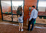 Trainer Graham Motion walks the barn with his son Marcus before Animal Kingdom, winner of the 137th Kentucky Derby, arrives at his new home in the Team Valor Barn at the Fair Hill Training Center on May 10, 2011 in Fair Hill, Maryland.