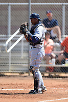 Detroit Tigers catcher Franklin Navarro (73) during a minor league spring training game against the Houston Astros on March 21, 2014 at Osceola County Complex in Kissimmee, Florida.  (Mike Janes/Four Seam Images)