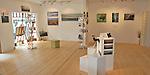 Wilderness Gallery