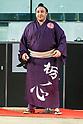 Hakkiyoi KITTE Sumo near Tokyo Station