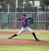 Juan Mejia - 2020 AIL Rockies (Bill Mitchell)