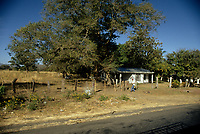 Costa Rica - file Photo -Tamarindo, small house of the side of the road