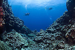 Divers swim along dead reef, destroyed by a typhoon, Yap, Federated States of Micronesia, Pacific Ocean