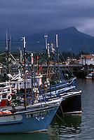 Europe/France/Aquitaine/64/Pyrénées-Atlantiques/Saint-Jean-de-Luz: Le port de pêche - A l'arrière plan la Rhune