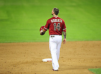 May 9, 2012; Phoenix, AZ, USA; Arizona Diamondbacks infielder Ryan Roberts during game against the St. Louis Cardinals at Chase Field. The Cardinals defeated the Diamondbacks 7-2. Mandatory Credit: Mark J. Rebilas-
