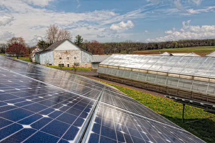 Maximuck Farm - Bucks County - one of the first Bucks County farmers to embrace solar in a big way.