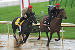 Archarcharch, trained by Jinks Fires, exercises in company in preparation for the 137th running of the Kentucky Derby at Churchill Downs in Louisville, Kentucky to be run May 7, 2011.