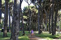 - Viareggio (Toscana), parco naturale di Migliarino, San Rossore, Massaciuccoli<br /> <br /> - Viareggio (Tuscany), Migliarino, San Rossore, Massaciuccoli natural park