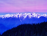 Pink and blue sunrise over the Olympic Mountains. Olympic National Park, Washington.