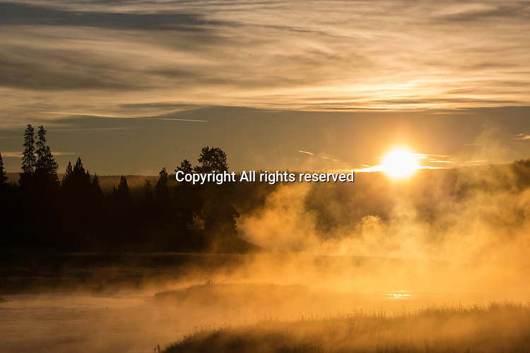 The sun rises over the Madison River in Yellowstone.