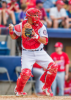 13 March 2016: Washington Nationals catcher Wilson Ramos in action during a pre-season Spring Training game against the St. Louis Cardinals at Space Coast Stadium in Viera, Florida. The teams played to a 4-4 draw in Grapefruit League play. Mandatory Credit: Ed Wolfstein Photo *** RAW (NEF) Image File Available ***