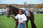 Recent Saratoga winner History Boy and Carl Cook before the Grand National.