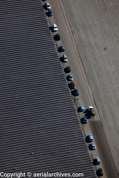 aerial photograph of farm workers working a field in San Luis Obispo County, California
