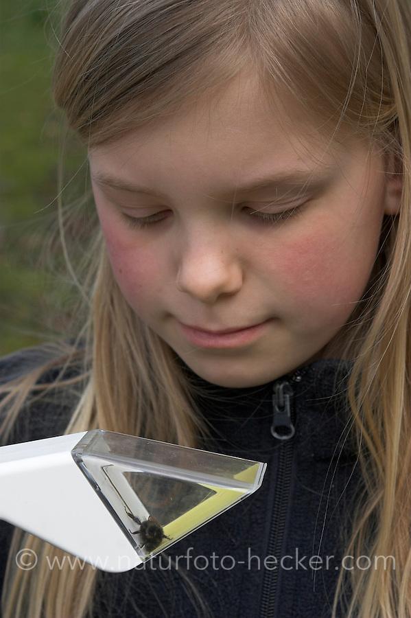 Kind beobachtet Hummel, Mädchen hat Hummel in einem Snappy gefangen