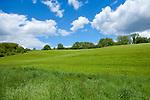 Europa, DEU, Deutschland, Nordrhein-Westfalen, Duesseldorf, Rotthaeuser Bachtal, Feld, Himmel, Wolken, Natur, Umwelt, Landschaft, Jahreszeiten, Stimmungen, Landschaftsfotografie, Landschaften, Landschaftsphoto, Landschaftsphotographie, <br /> <br /> [Fuer die Nutzung gelten die jeweils gueltigen Allgemeinen Liefer-und Geschaeftsbedingungen. Nutzung nur gegen Verwendungsmeldung und Nachweis. Download der AGB unter http://www.image-box.com oder werden auf Anfrage zugesendet. Freigabe ist vorher erforderlich. Jede Nutzung des Fotos ist honorarpflichtig gemaess derzeit gueltiger MFM Liste - Kontakt, Uwe Schmid-Fotografie, Duisburg, Tel. (+49).2065.677997, ..archiv@image-box.com, www.image-box.com]