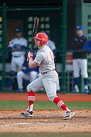 Ryan Karl (17) of the Cornell Big Red follows through on his swing against the Seton Hall Pirates at The Ripken Experience on February 27, 2015 in Myrtle Beach, South Carolina.  The Pirates defeated the Big Red 3-0.  (Brian Westerholt/Four Seam Images)