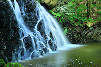 SC - Inverness-shire<br /> Black Isle -Waterfall Fairy Glen<br /> <br /> Full size 69,3 MB