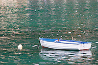 A white and blue rowing boat moored by a white buoy on a green sea. Uvala Sumartin bay between Babin Kuk and Lapad peninsulas. Dubrovnik, new city. Dalmatian Coast, Croatia, Europe.