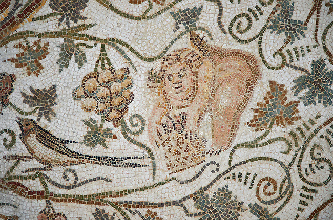 Detail of a Roman mosaics design depicting Silenus and Cupids showing cupids amongst vines, from the House of Sienus, ancient Roman city of Thysdrus. 3rd century AD. El Djem Archaeological Museum, El Djem, Tunisia.