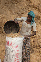 Agra, India.  Manual Laborer Putting Animal Feed into Bags.