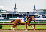 April 28, 2021: Known Agenda, trained by trainer Todd Pletcher, exercises in preparation for the Kentucky Derby at Churchill Downs on April 29, 2021 in Louisville, Kentucky. Scott Serio/Eclipse Sportswire/CSM