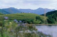 Europe/France/Auvergne/63/Puy-de-Dôme/Parc Naturel Régional des Volcans/Lac de Guery: Le lac et le massif du Sancy (1885mètres)