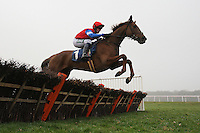 Race winner Poole Master ridden by Chris Honour jumps the last in the the Berry Bros & Rudd National Hunt Novices Hurdle - Horse Racing at Newbury Racecourse, Berkshire - 02/03/12 - MANDATORY CREDIT: Gavin Ellis/TGSPHOTO - Self billing applies where appropriate - 0845 094 6026 - contact@tgsphoto.co.uk - NO UNPAID USE.