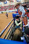January 2009: Bullrider Dave Samsel getting ready to ride Diaper Rash at the CBR World Championships in Las Vegas.