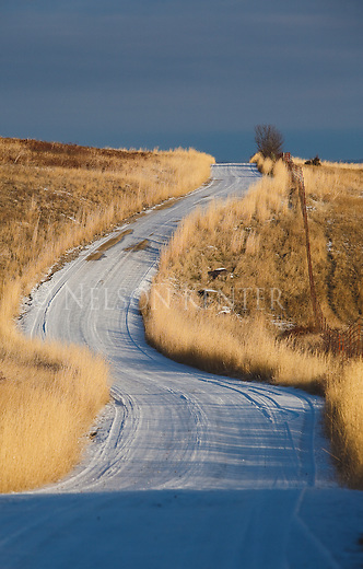 A rural gravel road winds through grasslands in western Montana