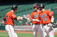 Sam Houston State Bearkats first baseman Ryan O'Hearn #27 is greeted at home by his teammates after hitting his second home run of the NCAA baseball game against the Texas Tech Red Raiders on March 1, 2014 during the Houston College Classic at Minute Maid Park in Houston, Texas. The Bearkats defeated the Red Raiders 10-6. (Andrew Woolley/Four Seam Images)