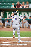 Niko Decolati (16) of the Grand Junction Rockies bats against the Ogden Raptors at Lindquist Field on July 25, 2018 in Ogden, Utah. The Rockies defeated the Raptors 4-0. (Stephen Smith/Four Seam Images)