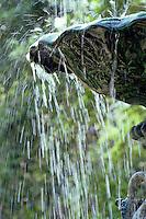 Water splashes out of a fountain in Savannah, Georgia.