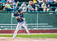4 September 2017: Vermont Lake Monsters infielder Ryan Gridley at bat in the 3rd inning during the first game of a double-header against the Tri-City ValleyCats at Centennial Field in Burlington, Vermont. The Lake Monsters split their games, falling 6-5 in the first, then winning the second 7-4, thus clinching the NY Penn League Stedler Division Championship. Mandatory Credit: Ed Wolfstein Photo *** RAW (NEF) Image File Available ***