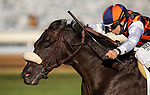 October 03, 2020:  Ivar with Joe Talamo up wins the Shadwell Turf Mile Stakes at Keenland Racecourse, in Lexington, Kentucky on October 03, 2020.  Evers/Eclipse Sportswire/CSM