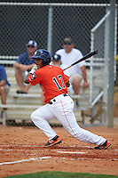 GCL Astros catcher Ruben Castro (17) at bat during a game against the GCL Braves on July 23, 2015 at the Osceola County Stadium Complex in Kissimmee, Florida.  GCL Braves defeated GCL Astros 4-2.  (Mike Janes/Four Seam Images)