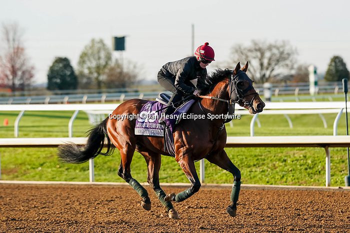 November 5, 2020: Mighty Gurkha, trained by trainer Archie Watson, exercises in preparation for the Breeders' Cup Juvenile Turf Sprint at Keeneland Racetrack in Lexington, Kentucky on November 5, 2020. Dan Heary/Eclipse Sportswire/Breeders Cup/CSM