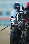 March 6, 2021: Will's Secret (2) with jockey Jon Court aboard before the Honeybee Stakes (G3) at Oaklawn Racing Casino Resort in Hot Springs, Arkansas on March 6, 2021. Justin Manning/Eclipse Sportswire/CSM