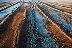 Flooded Australian Desert