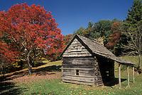 AJ4500, cabin, fall foliage, Blue Ridge Parkway, Blue Ridge, North Carolina, Appalachian Mountains, Scenic log cabin and colorful tree along the Blue Ridge Parkway in the fall in the state of North Carolina.