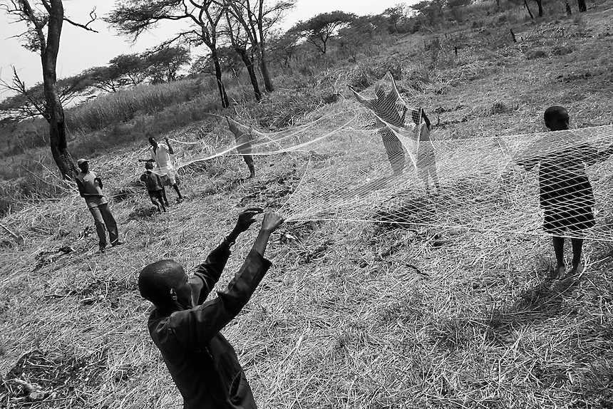 Empowering Victims of War- Stretching out fishing net used to catch fish in the farmÕs pond. Canaan Family Farm lends land to displaced people from the Northern conflict to have them learn the benefits of work and empowerment. Rwakayata, Masindi, Uganda, Africa. December 2005 © Stephen Blake Farrington