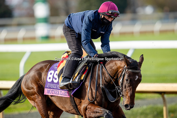 November 5, 2020: Mother Earth, trained by trainer Aidan P. O'Brien, exercises in preparation for the Breeders' Cup Juvenile Fillies Turf at  Keeneland Racetrack in Lexington, Kentucky on November 5, 2020. Alex Evers/Eclipse Sportswire/Breeders Cup