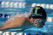 Nelson/Marlborough Swim Champs