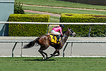 ARCADIA, CA  SEP 26:  #4 Bulletproof One, ridden by Ricardo Gonzalez, wires the field to win the Unzip Me Stakes on September 26, 2020 at Santa Anita Park in Arcadia, CA. (Photo by Casey Phillips/Eclipse Sportswire/CSM.