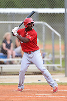 St. Louis Cardinals outfielder Matthew Young (36) during a minor league spring training intrasquad game on March 28, 2014 at the Roger Dean Stadium Complex in Jupiter, Florida.  (Mike Janes/Four Seam Images)