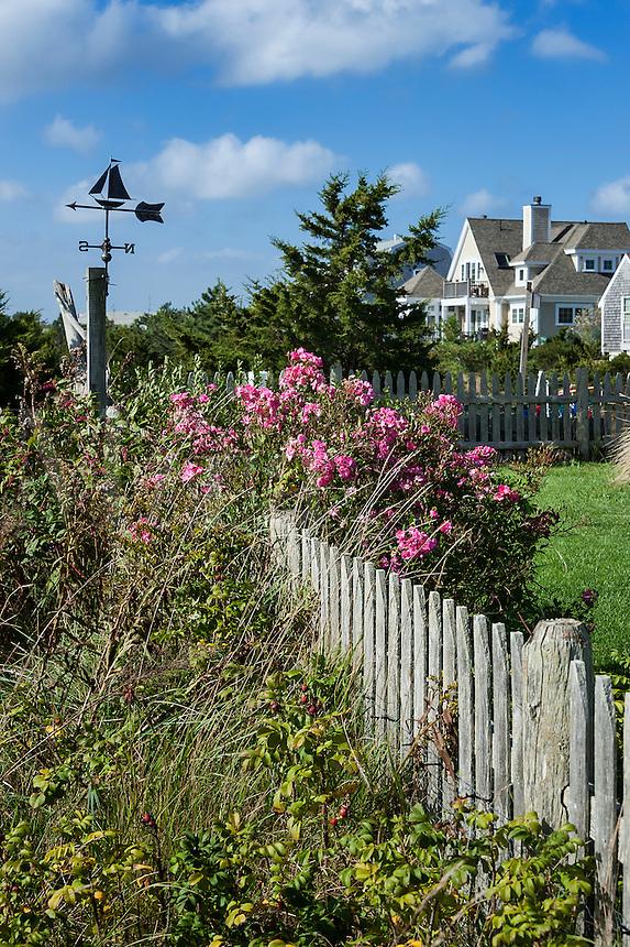 Charming house and yard, Cape Cod, Massachusetts, USA